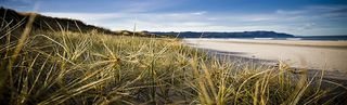 Beachaven Top10 Holiday Park: 21 Leo Street, Waihi Beach #1245: From  $22.00 per night