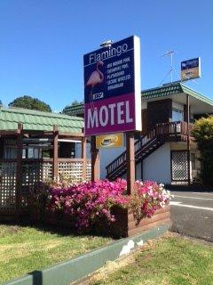 Flamingo Motel, 355 Devon Street West, New Plymouth #1372