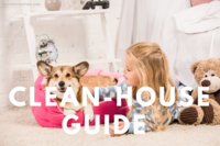 The Ultimate Clean-House Guide for Dog Owners